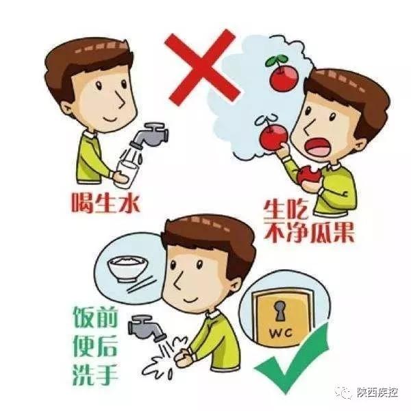 (1)养成良好的卫生和生活习惯,饭前便后,加工制作食品前要洗手,定期